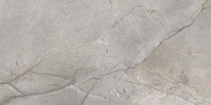 ceramic.md masterstone silver 1 2