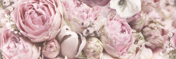 Glamour Flower B